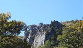 Trail Walk LE VALTIN - sentiers des roches   - Photo 3