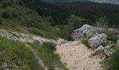 Trail Walk LANS-EN-VERCORS - Pic Saint-Michel et col d'Arc Vercors - Photo 3