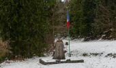 Randonnée Marche LE MENIL - Grande boucle au départ des chalets de la Feigne sur de l'Eau - Photo 6