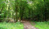 Randonnée Marche HARAMONT - en forêt de Retz_79_08_2019_vers Taillefontaine et Retheuil par les lisières - Photo 72