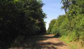 Randonnée Marche LACROIX-SAINT-OUEN - en forêt de Compiègne_35_la Croix Saint-Sauveur_le Ru du Goderu - Photo 100