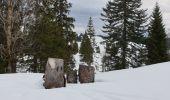 Randonnée Raquettes à neige DIVONNE-LES-BAINS - La Dole alt 1676m en raquette - Photo 29