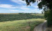 Randonnée Marche Yvoir - Durnal / 2020-07-19 - Photo 5