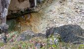 Randonnée Marche BOUQUET - Grandes et petites Aiguières au départ de Suzon - Photo 5