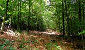 Randonnée Marche HARAMONT - en forêt de Retz_79_08_2019_vers Taillefontaine et Retheuil par les lisières - Photo 99