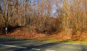 Trail On foot VIEUX-MOULIN - en forêt de Compiègne_23_la Grotte des Ramoneurs_le Mont Berny - Photo 3