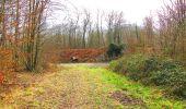 Randonnée A pied VILLERS-COTTERETS - le GR11A  dans la Forêt de Retz  - Photo 4