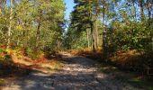 Trail Walk LONGPONT - en forêt de Retz_29_Longpont_la cave du Diable_A - Photo 39