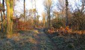 Trail Walk SAINT-JEAN-AUX-BOIS - en forêt de Compiègne_33_12_2019_les Tournantes de l'étang Saint-Jean et des Prés Saint-Jean - Photo 192