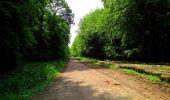 Randonnée Marche COYOLLES - en forêt de Retz_78_les rayons du Rond Capitaine - Photo 28