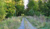 Trail Walk DAMPLEUX - en forêt de Retz_80_sur la Route Tortue et la Route Droite - Photo 92