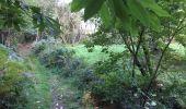 Randonnée Trail NEANT-SUR-YVEL - Autour des étangs à partir du gîte de tante Phonsine - Photo 4