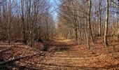 Trail Walk PIERREFONDS - en forêt de Compiègne_24_Tournantes sur le Voliard et sur la Fortelle_chaussée Brunehaut - Photo 137