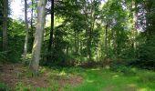 Randonnée Marche HARAMONT - en forêt de Retz_79_08_2019_vers Taillefontaine et Retheuil par les lisières - Photo 48