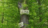 Randonnée Marche LONGPONT - en forêt de Retz_77_Longpont_Puiseux en Retz_AR - Photo 10