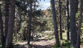 Trail Walk LES ANGLES - balade des 12 lacs  depuis le lac de bouilloires  - Photo 26