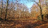 Trail Walk PIERREFONDS - en forêt de Compiègne_24_Tournantes sur le Voliard et sur la Fortelle_chaussée Brunehaut - Photo 23