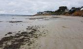 Randonnée Marche MESQUER - la pointe de Merquel à marée basse - Photo 15