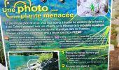 Trail Walk ARAGNOUET - les lacs - Photo 11