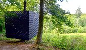 Randonnée A pied Ciney - Sentiers d'Art - Boucle Bois des Aunes - Vincon - Photo 3