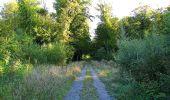 Trail Walk DAMPLEUX - en forêt de Retz_80_sur la Route Tortue et la Route Droite - Photo 95