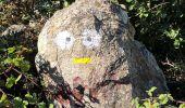 Randonnée Marche BELESTA - 20200907 tour depuis Bélesta - Photo 8