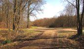 Randonnée A pied VILLERS-COTTERETS - le GR11A  dans la Forêt de Retz  - Photo 110