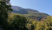 Randonnée Marche SEYSSINET-PARISET - bois de vouillant 2020 - Photo 2