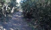 Randonnée Marche VIVIERS - 07 viviers st montan - Photo 12