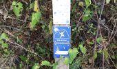 Randonnée Marche LES ANSES-D'ARLET - cap salomon - Photo 2