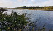 Randonnée Marche MESQUER - la pointe de Merquel à marée basse - Photo 6