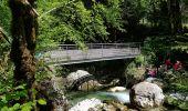Randonnée Marche SAINT-GERVAIS - Les Gorges du Gorgonnet par le hameau des Monts - Photo 6