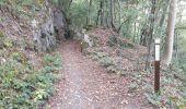 Trail Walk Profondeville - Le sentier géologique et pédologique de Profondeville  - Photo 6