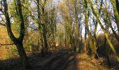 Trail Walk RETHEUIL - en forêt de Retz_76_dans les forêts de Retz et de Compiègne - Photo 18