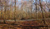 Trail On foot VIEUX-MOULIN - en forêt de Compiègne_23_la Grotte des Ramoneurs_le Mont Berny - Photo 87