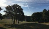 Randonnée Trail NEANT-SUR-YVEL - Autour des étangs à partir du gîte de tante Phonsine - Photo 15