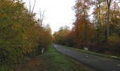 Randonnée Marche SAINT-JEAN-AUX-BOIS - en forêt de Compiègne_32_11_2019_les Tournantes de la Muette et sous la Tête Saint-Jean - Photo 145