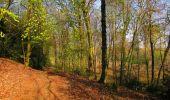 Randonnée Marche LONGPONT - en forêt de Retz_77_Longpont_Puiseux en Retz_AR - Photo 137