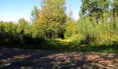 Trail Walk DAMPLEUX - en forêt de Retz_80_sur la Route Tortue et la Route Droite - Photo 297