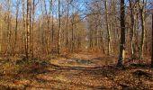 Trail Walk PIERREFONDS - en forêt de Compiègne_24_Tournantes sur le Voliard et sur la Fortelle_chaussée Brunehaut - Photo 92