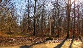 Trail Walk PIERREFONDS - en forêt de Compiègne_24_Tournantes sur le Voliard et sur la Fortelle_chaussée Brunehaut - Photo 123