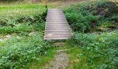 Randonnée Marche Tellin - repérage zero carbone 16092020 - Photo 19