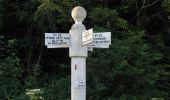 Randonnée Marche SAINT-JEAN-AUX-BOIS - en forêt de Compiègne_2_ruines gallo-romaines de Champlieu_les Petits Monts - Photo 170