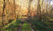 Trail On foot VIEUX-MOULIN - en forêt de Compiègne_23_la Grotte des Ramoneurs_le Mont Berny - Photo 32