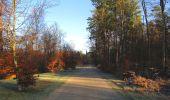 Trail Walk SAINT-JEAN-AUX-BOIS - en forêt de Compiègne_33_12_2019_les Tournantes de l'étang Saint-Jean et des Prés Saint-Jean - Photo 36