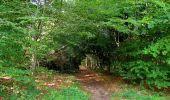Randonnée Marche SAINT-JEAN-AUX-BOIS - en forêt de Compiègne_6_les Grands Monts_la route tournante sur la tête St-Jean - Photo 137