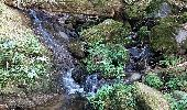Trail Walk METZERAL - Steinabruck - Le Hohneck et ses 3 lacs Fischboedle, Altenweiher et Schiessrothried - Photo 9
