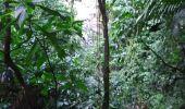 Randonnée Marche LE PRECHEUR - Cascade de la couleuvre - Photo 10