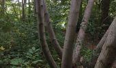 Randonnée Chasse Tancarville - Tancarville  - Photo 1