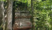 Trail Walk ALLARMONT - 2019-06-08 Marche Allarmont et ses rochers - Photo 8